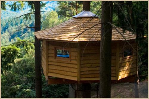 Dormir en una caba a de un rbol en gerona mundo turistico - Hoteles cabanas en los arboles ...