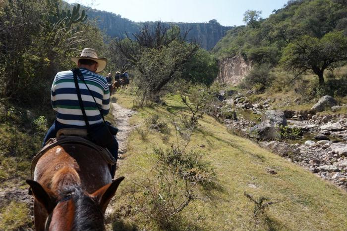 caballos-sanmiguelallende