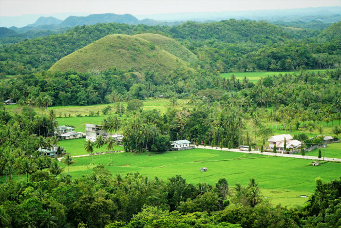chocolate-hills-paisaje
