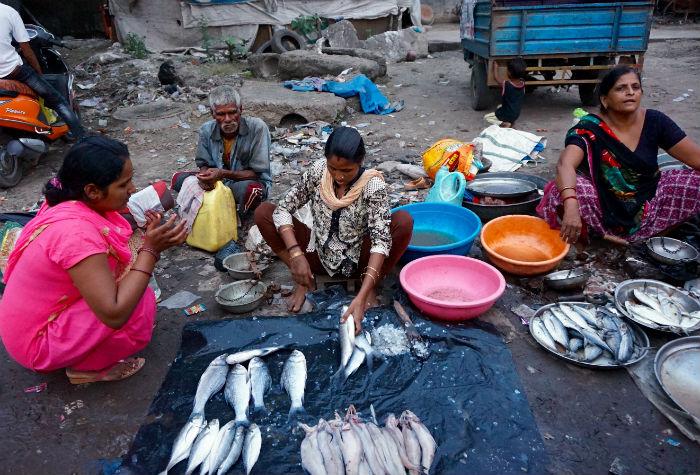 vendedores-ankeshwar