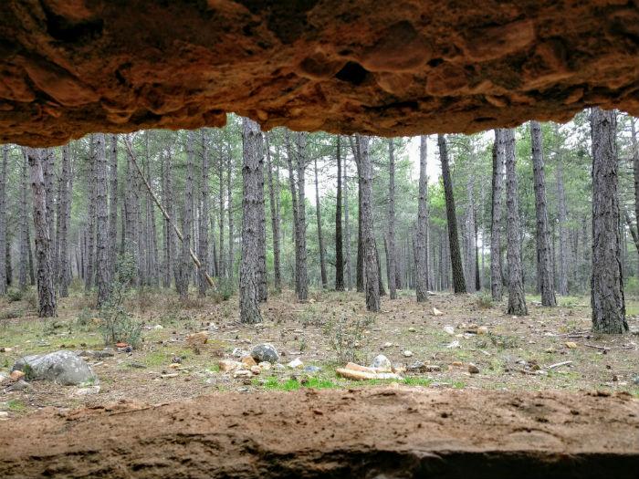 bunker2-frentedelaguaruta