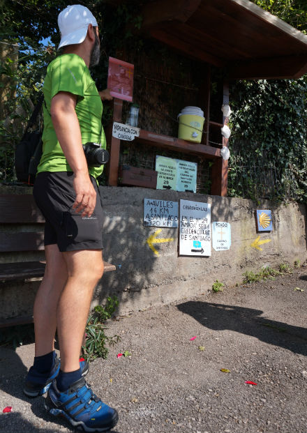 peregrino-camino-santiago