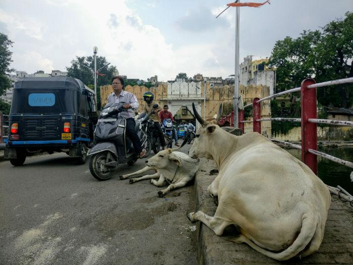 calles-udaipur2