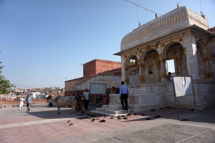 bikaner-templo3