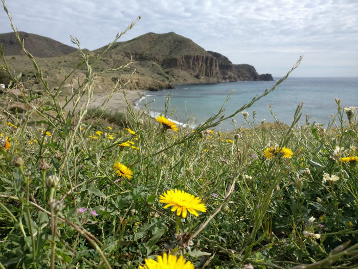 playa-isleta-moro2