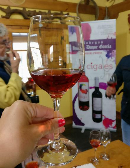 vino-rosado-cigales