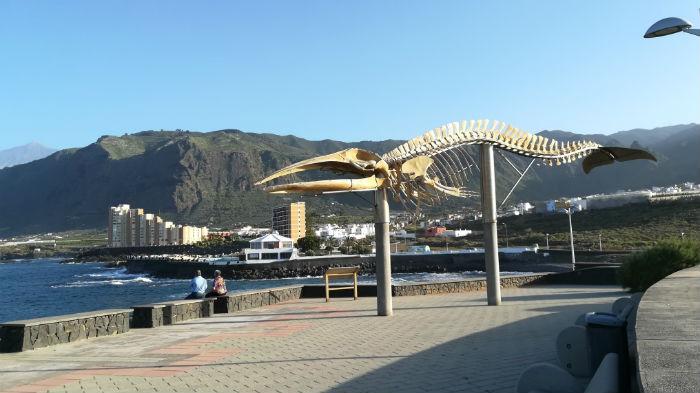 los silos playa-