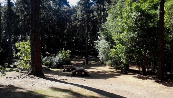 ruta Aguagarcia tacoronte
