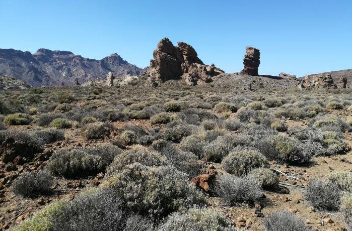 vista-roques-teide