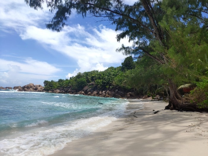 anse-cocos-ladigue