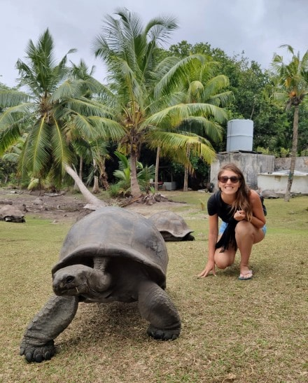tortugas-gigantes-curieuse
