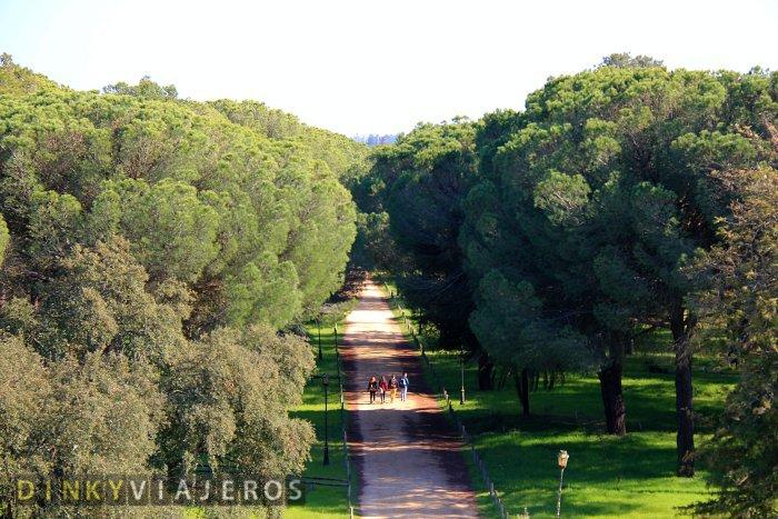 DinkyViajeros-Doñana-Huelva