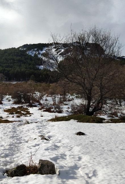 ruta-najarra-niev
